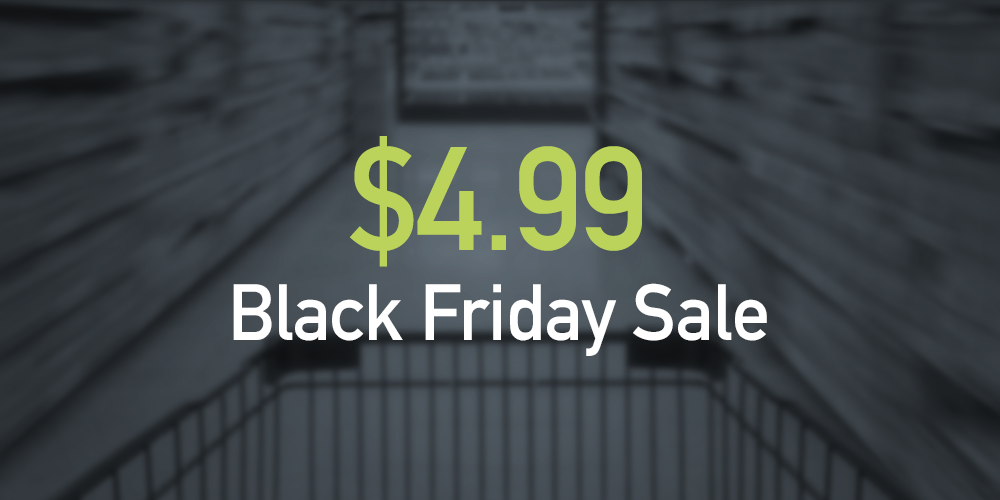 black_friday_domain_name_sale